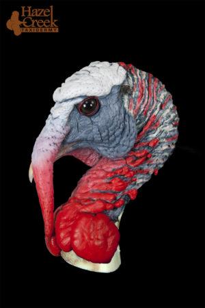 Half Strut Painted Turkey Head