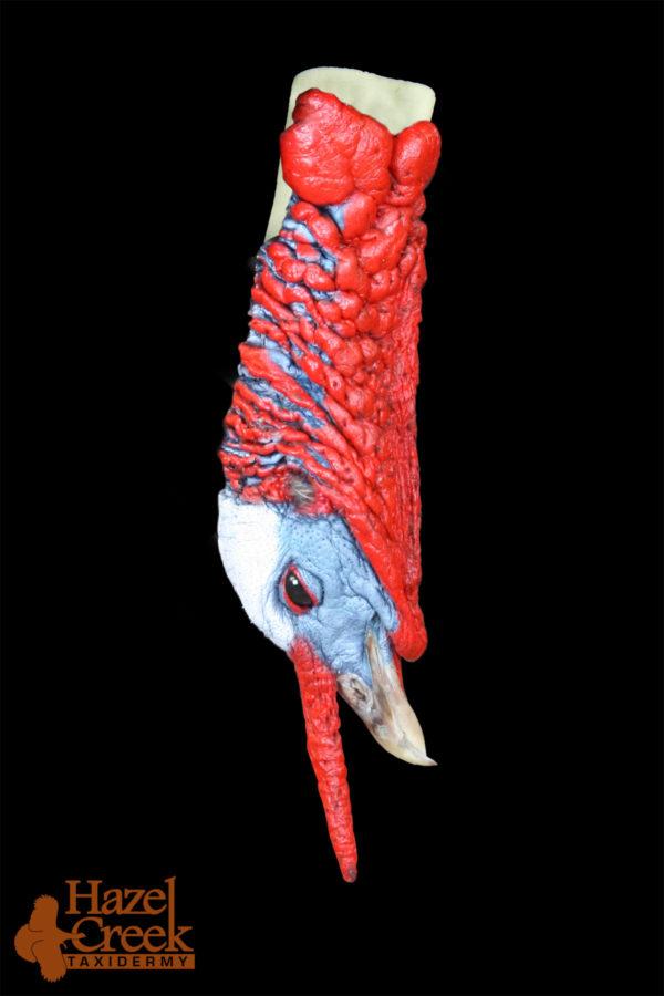 Painted Hanging Turkey Head