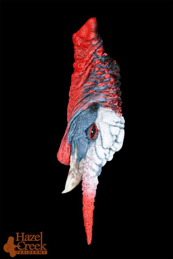 painted turkey head