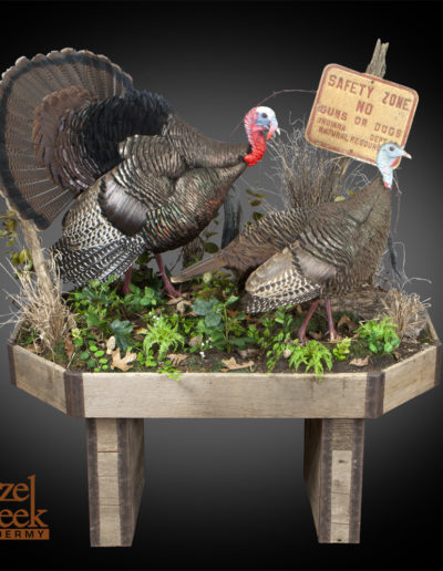 Strut Gobbler and Walking Hen on Barnboard