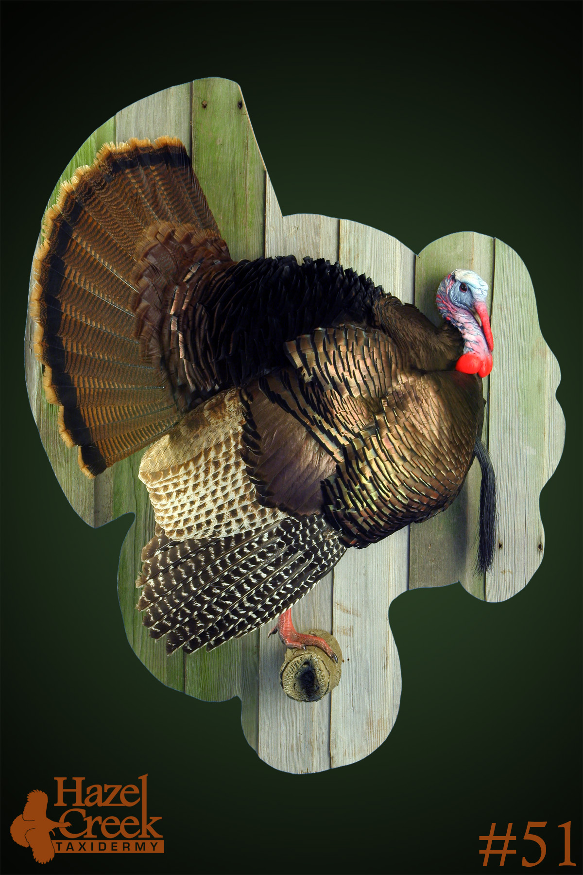 Half Turkey on Barnwood Panel